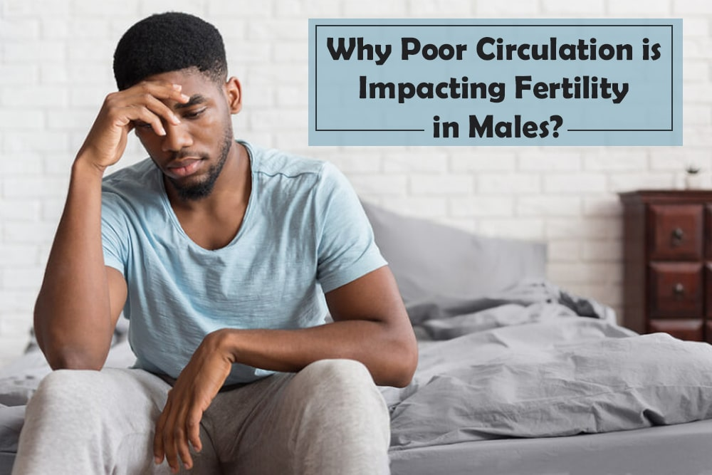 Why Poor Circulation is impacting Fertility in Males?